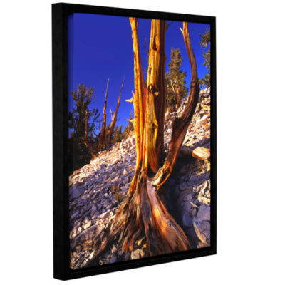 Brushstone White Mountains Afternoon Gallery Wrapped Floater-Framed Canvas Wall Art