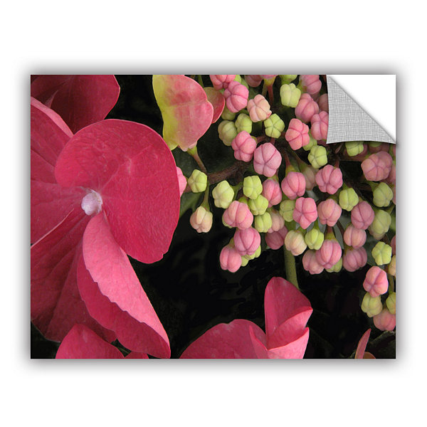 Brushstone Hydrangea Study Removable Wall Decal