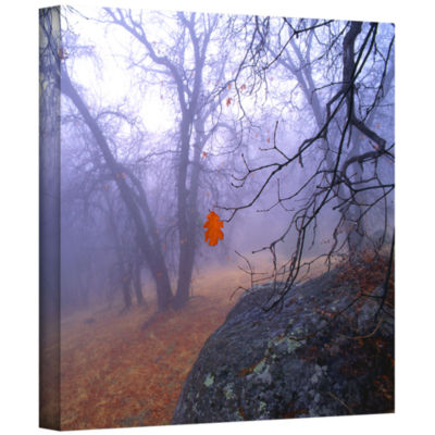 Brushstone Nearly Winter Gallery Wrapped Canvas Wall Art