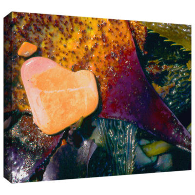 Brushstone Pebbles On Kelp Gallery Wrapped CanvasWall Art
