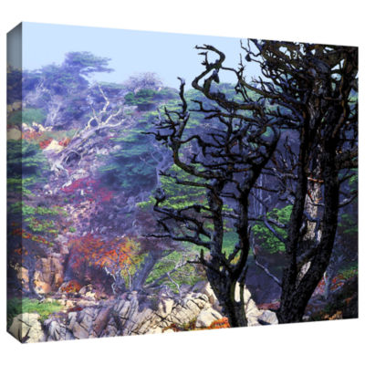 Brushstone Point Lobos Morning Gallery Wrapped Canvas Wall Art