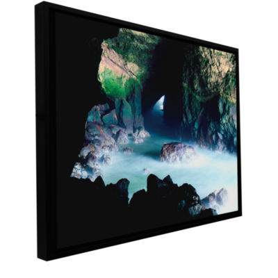 Brushstone Sea Lion Cave Gallery Wrapped Floater-Framed Canvas Wall Art