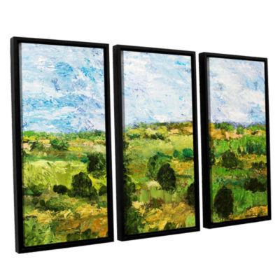 Brushstone Just Roll Along 3-pc. Floater Framed Canvas Wall Art