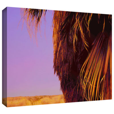 Brushstone Twilight Palm Borrego Gallery Wrapped Canvas Wall Art