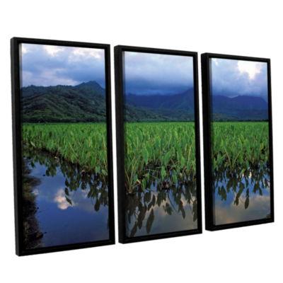 Brushstone Kauai Taro Field 3-pc. Floater Framed Canvas Wall Art