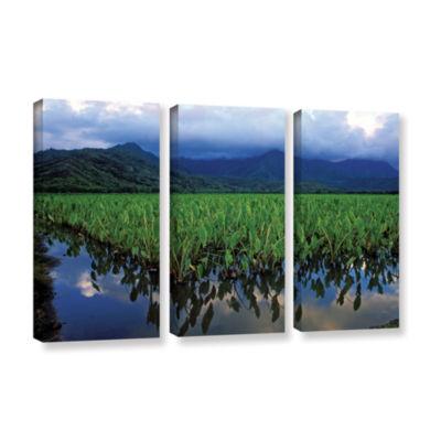 Brushstone Kauai Taro Field 3-pc. Gallery WrappedCanvas Wall Art