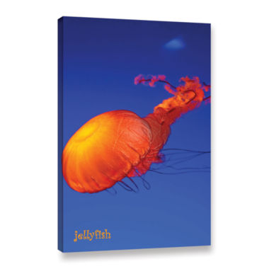 Brushstone Jelly Fish Gallery Wrapped Canvas