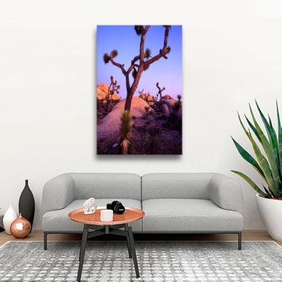 Brushstone Joshua Tree Twilight Gallery Wrapped Canvas