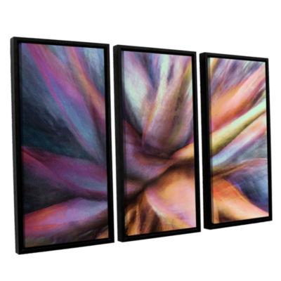 Brushstone Nkeez 3-pc. Floater Framed Canvas WallArt