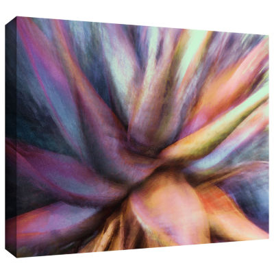 Brushstone Nkeez Gallery Wrapped Canvas Wall Art
