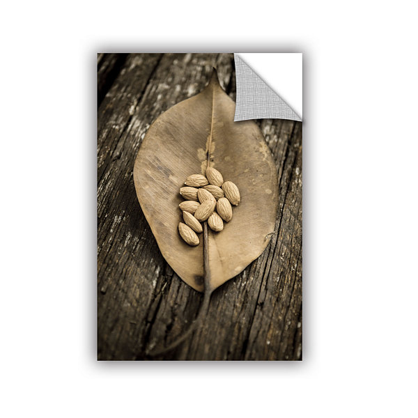 Brushstone Nuts In A Leaf Removable Wall Decal