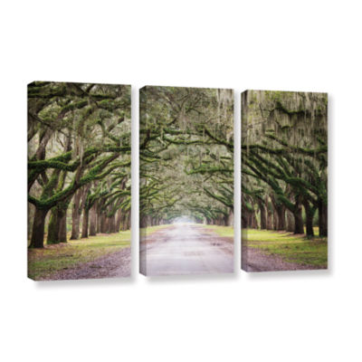 Brushstone Oak Trees With Spanish Moss In Savanna Georgia 3-pc. Gallery Wrapped Canvas Wall Art