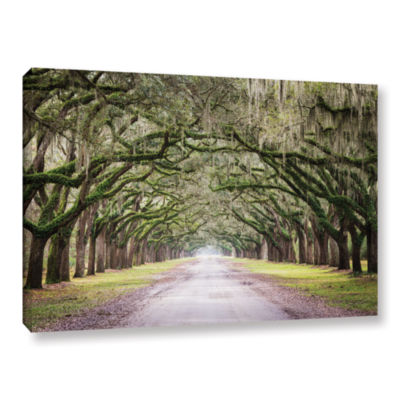 Brushstone Oak Trees With Spanish Moss In SavannaGeorgia Gallery Wrapped Canvas Wall Art