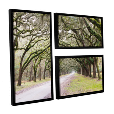 Brushstone Oak Trees With Spanish Moss In SavannaGeorgia2 3-pc. Flag Floater Framed Canvas Wall Art