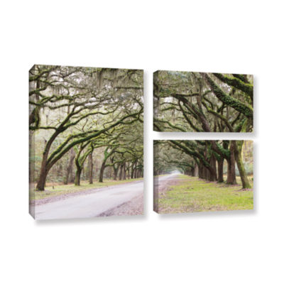 Brushstone Oak Trees With Spanish Moss In SavannaGeorgia2 3-pc. Flag Gallery Wrapped Canvas Wall Art