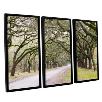 Brushstone Oak Trees With Spanish Moss In Savanna Georgia2 3-pc. Floater Framed Canvas Wall Art