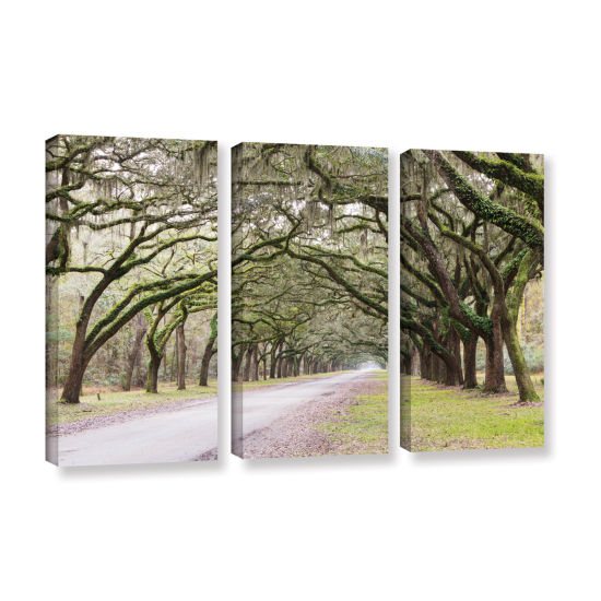 Brushstone Oak Trees With Spanish Moss In SavannaGeorgia2 3-pc. Gallery Wrapped Canvas Wall Art
