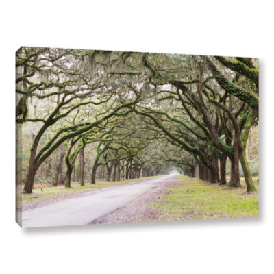 Brushstone Oak Trees With Spanish Moss In SavannaGeorgia2 Gallery Wrapped Canvas Wall Art