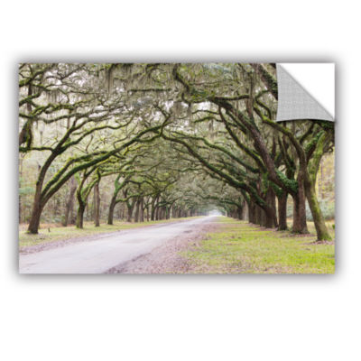 Brushstone Oak Trees With Spanish Moss In SavannaGeorgia2 Removable Wall Decal