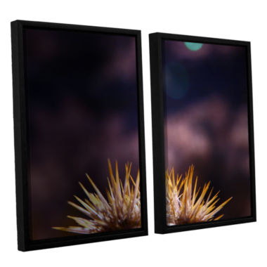Brushstone Obviousness Has Its Advantages 2-pc. Floater Framed Canvas Wall Art