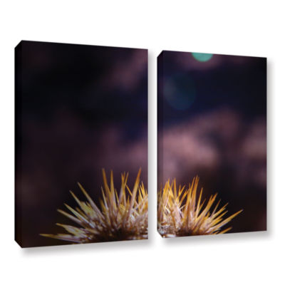 Brushstone Obviousness Has Its Advantages 2-pc. Gallery Wrapped Canvas Wall Art