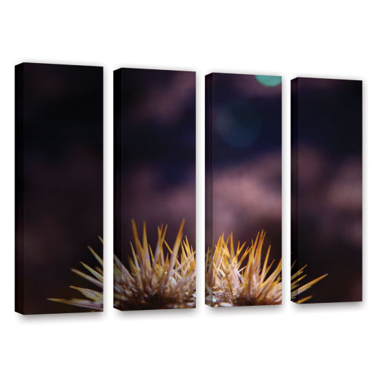Brushstone Obviousness Has Its Advantages 4-pc. Gallery Wrapped Canvas Wall Art