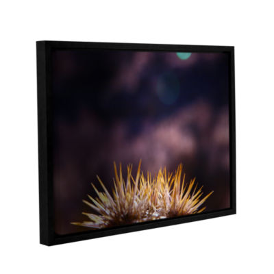 Brushstone Obviousness Has Its Advantages GalleryWrapped Floater-Framed Canvas Wall Art