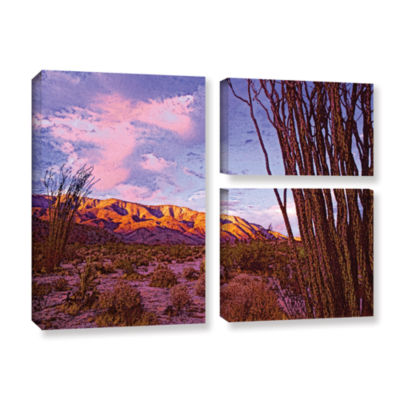 Brushstone Ocotillo Sunset 3-pc. Flag Gallery Wrapped Canvas Wall Art