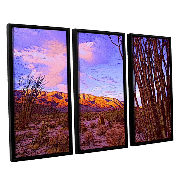 Brushstone Ocotillo Sunset 3-pc. Floater Framed Canvas Wall Art