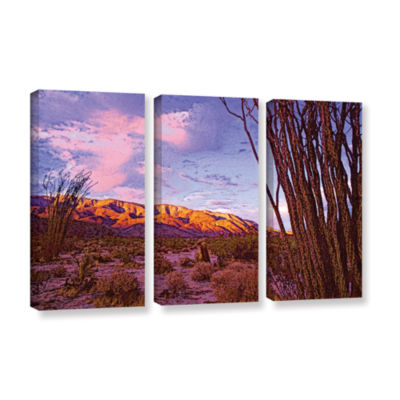 Brushstone Ocotillo Sunset 3-pc. Gallery Wrapped Canvas Wall Art