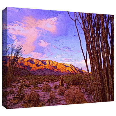 Brushstone Ocotillo Sunset Gallery Wrapped CanvasWall Art
