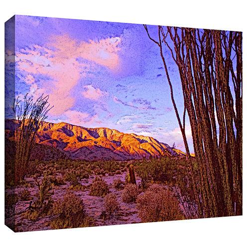 Brushstone Ocotillo Sunset Gallery Wrapped CanvasWall Art