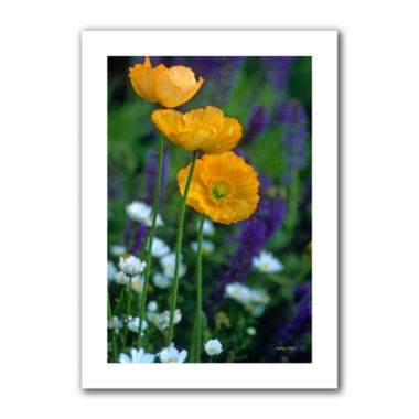 Brushstone La Playa Poppies Canvas Wall Art