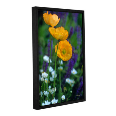 Brushstone La Playa Poppies Gallery Wrapped Floater-Framed Canvas Wall Art
