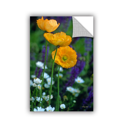Brushstone La Playa Poppies Removable Wall Decal