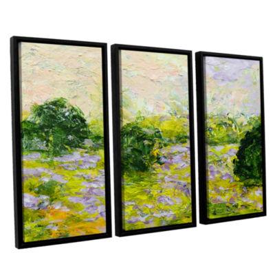 Brushstone Leicester 3-pc. Floater Framed Canvas Wall Art