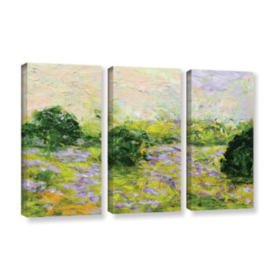 Brushstone Leicester 3-pc. Gallery Wrapped Canvas Wall Art