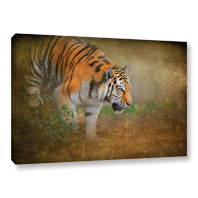 Brushstone On The Prowl Gallery Wrapped Canvas Wall Art