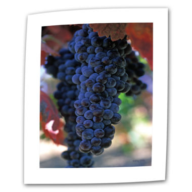 Brushstone On The Vine Canvas Wall Art