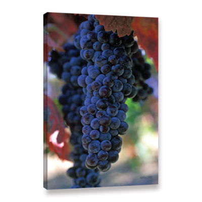 Brushstone On The Vine Gallery Wrapped Canvas WallArt