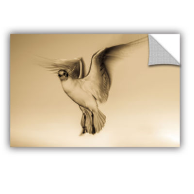 Brushstone One Bird Chest Ahead Removable Wall Decal