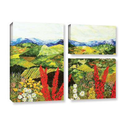 Brushstone One More Step 3-pc. Flag Gallery Wrapped Canvas Wall Art