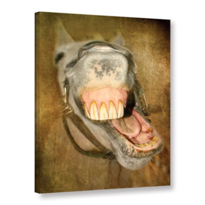 Brushstone Laughing Horse Gallery Wrapped Canvas Wall Art