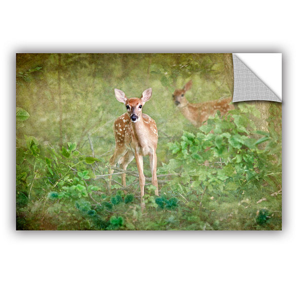 Brushstone Leering Doe Removable Wall Decal