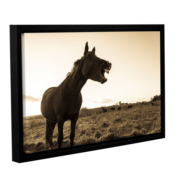Brushstone Laughing Horse Gallery Wrapped Floater-Framed Canvas Wall Art