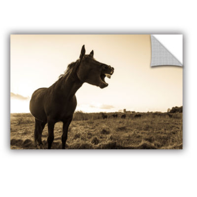 Brushstone Laughing Horse Removable Wall Decal