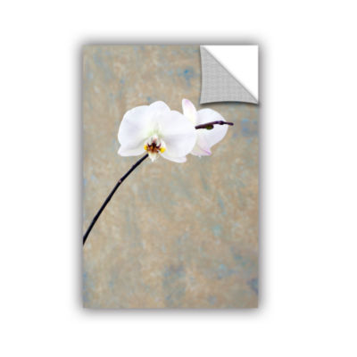 Brushstone Orchid Blossoms Removable Wall Decal