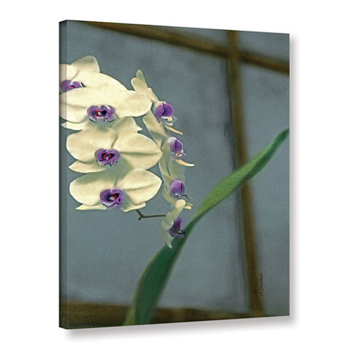 Brushstone Orchid In Window Gallery Wrapped CanvasWall Art