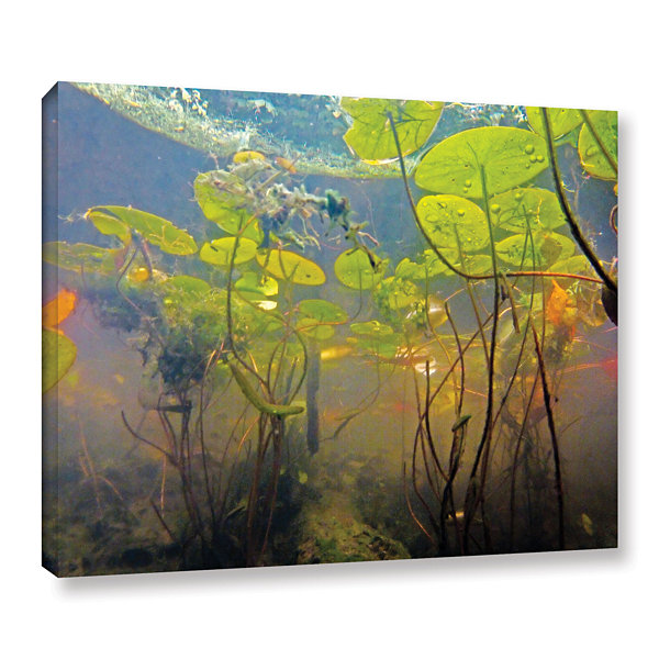 Brushstone Lake Hope UW #1 Gallery Wrapped CanvasWall Art