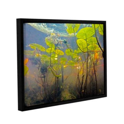 Brushstone Lake Hope UW #1 Gallery Wrapped Floater-Framed Canvas Wall Art